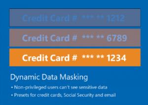 dyn_data_mask